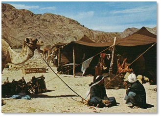 A goat hair tent of the Bedouin, modern day nomads of the Near East